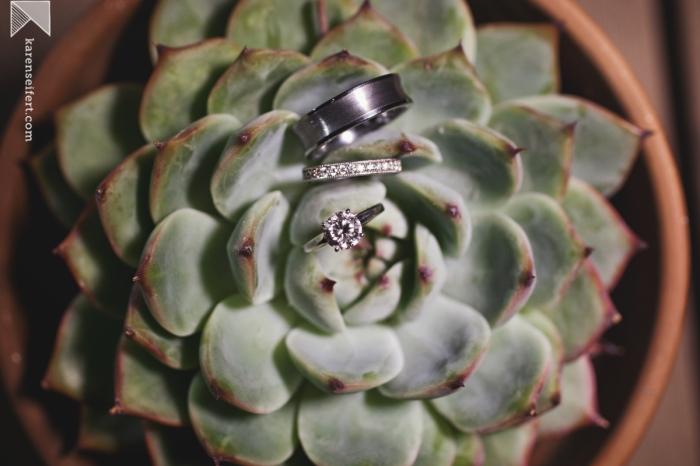 005_karen seifert succulent rings